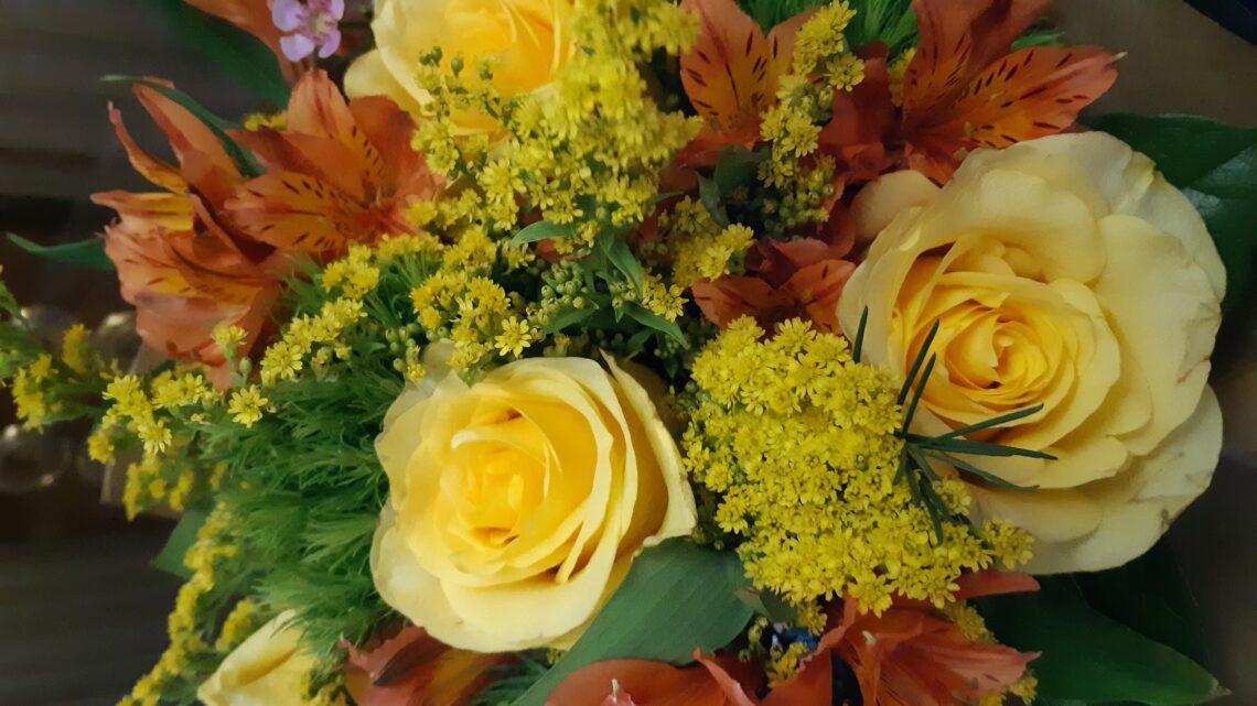 """Festa della donna, il mio 8 marzo dedicato alle amazzoni di Elisabetta Franchi e alla """"pitonessa"""" Daniela Santanché. Scoprite il perché"""